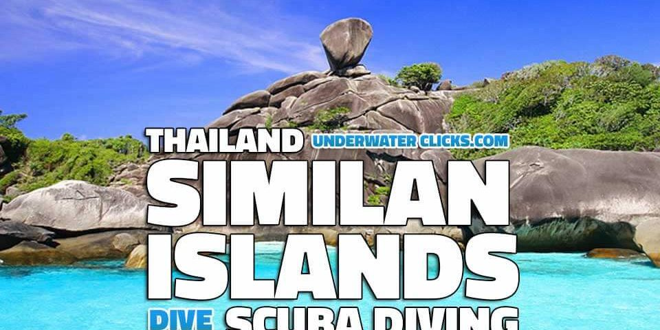 Similan Islands Liveaboard Reviews