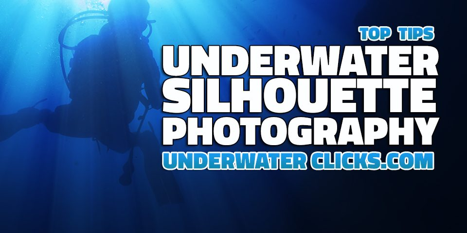 Underwater Silhouette Photography Tips
