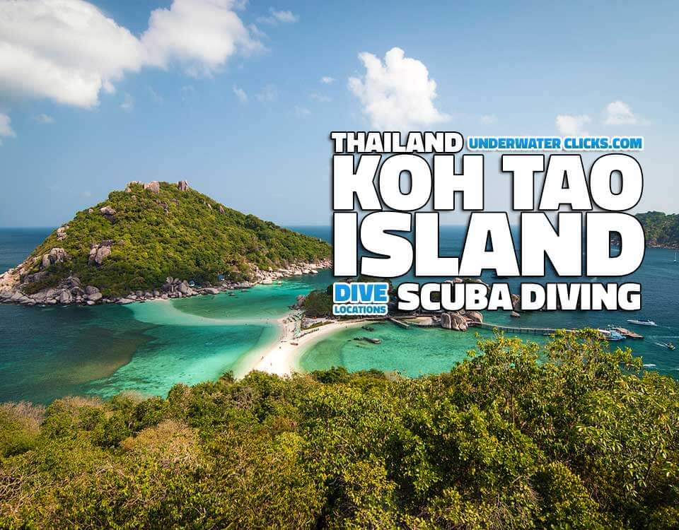 Scuba Diving Locations - Koh Tao Thailand