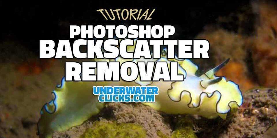 photoshop backscatter removal tutorial
