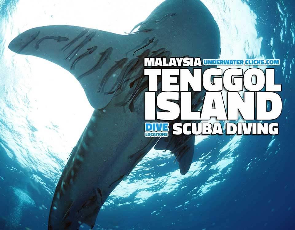 Diving tenggol malaysia - Padi dive locations ...