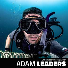 Adam Leaders - Underwater Photographer