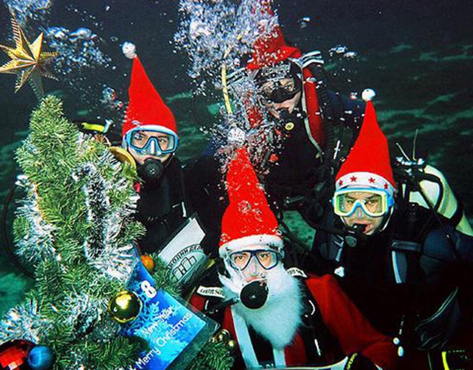 #4 Top 10 Christmas Divers