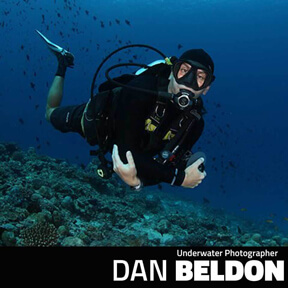 Featured Underwater photographer Dan Beldon